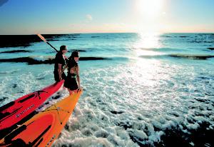 Sunsational Florida
