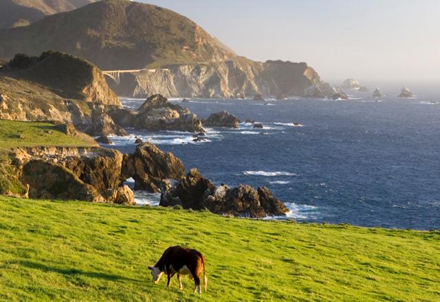 Küste Kaliforniens