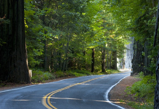 Wälder Straßen in Kalifornien