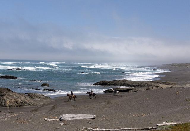 Küstenlandschaft Californien